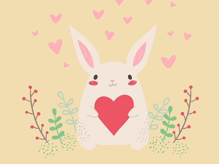 rabbit-3075088_960_720
