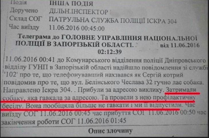 На довыборах в Днепре регистрируются двойники и коммунисты - Цензор.НЕТ 3272