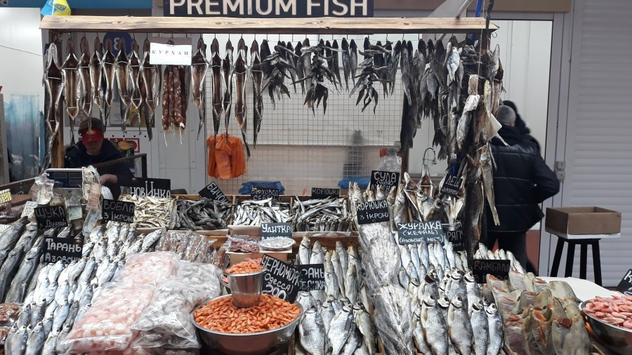 Рыбный ряд на Столичном рынке в Киеве 20190223_101732