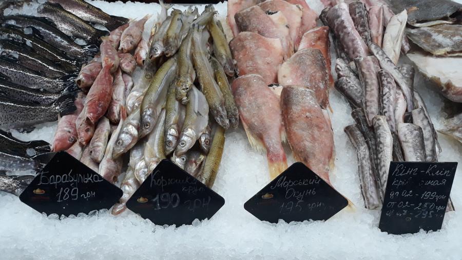 Рыбный ряд на Столичном рынке в Киеве 20190223_101811