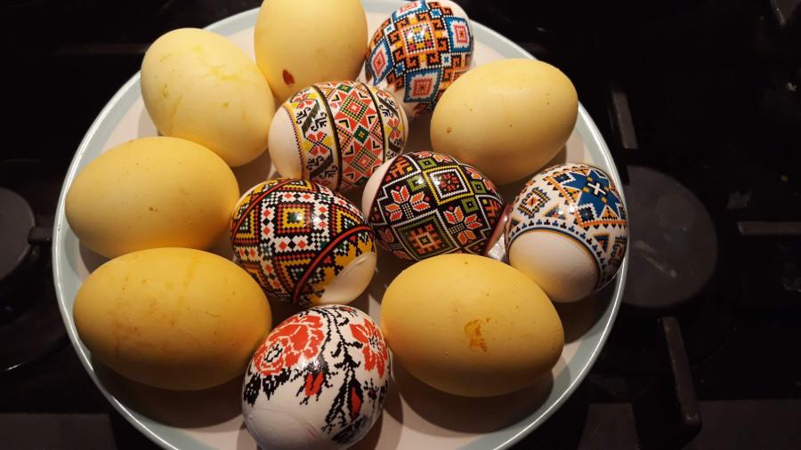 Время собирать яйца! 20190426_201316