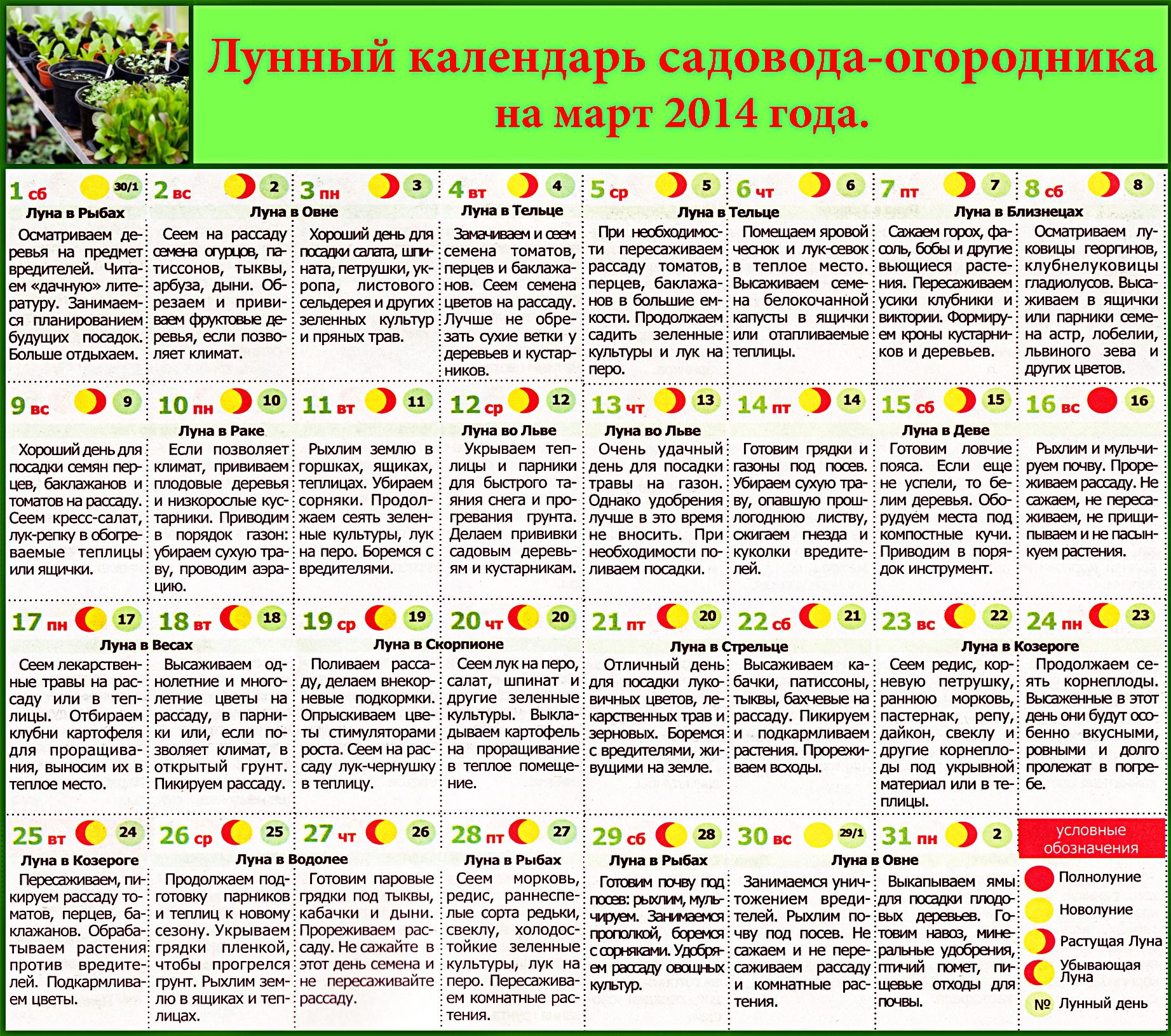 Лунный Календарь На Октябрь Диеты.
