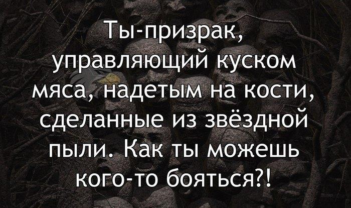 1384320855_1594927351