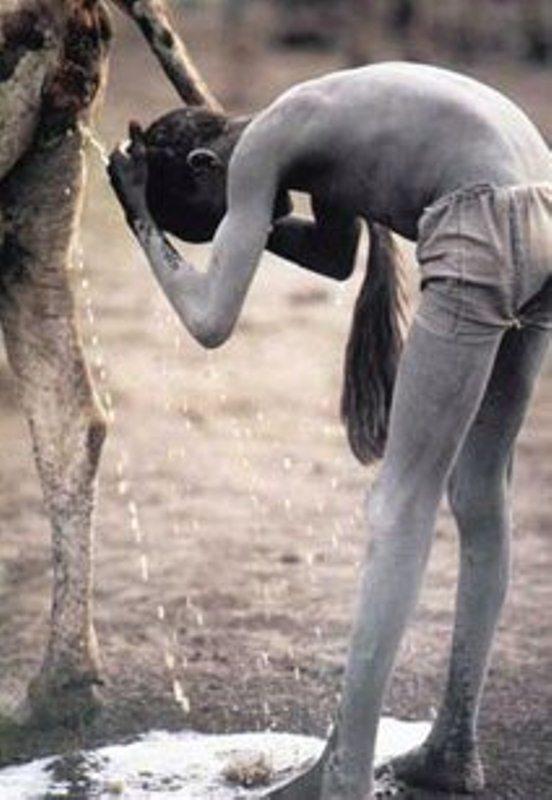 Слоновость фото