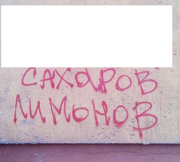 limonov1