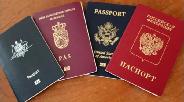 Лицам с двойным гражданством запретили занимать ряд государственных должностей 988