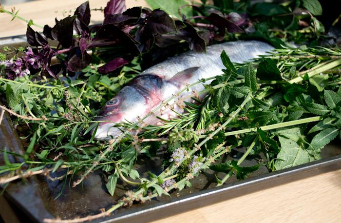 Рыба в травах 1