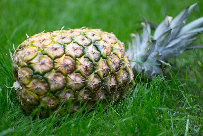 Щербет из ананаса