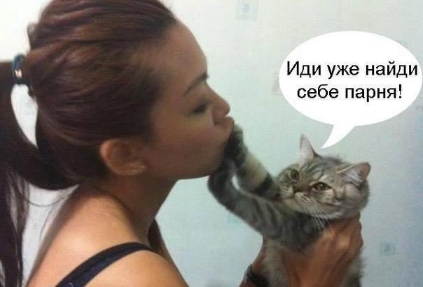 котенок говорит девушке