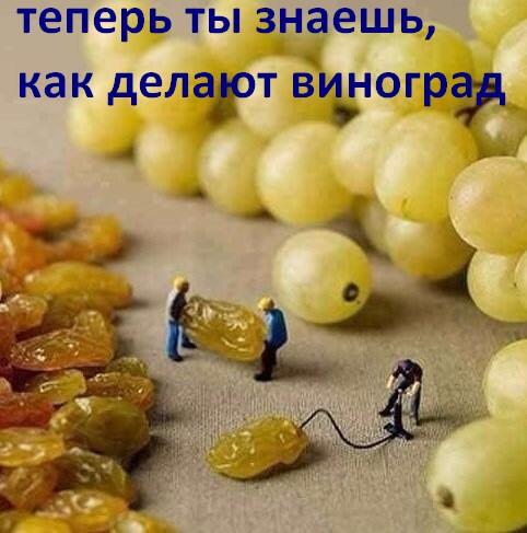 как делают виноград