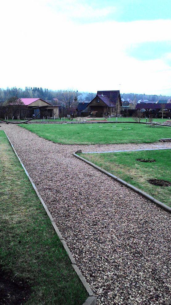 газон на даче