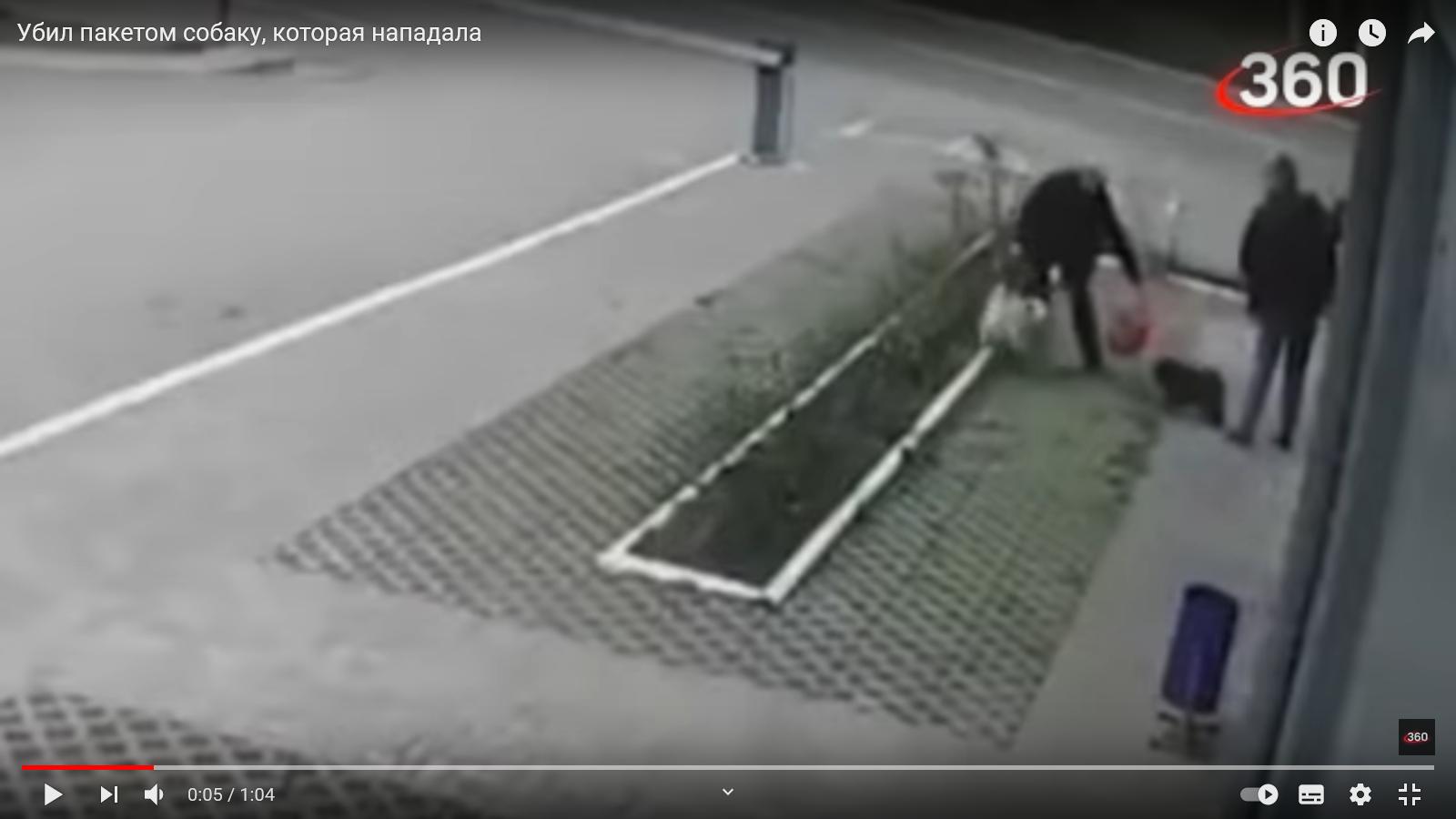 Отмахнулся от неожиданно напавшей собаки и убил ее