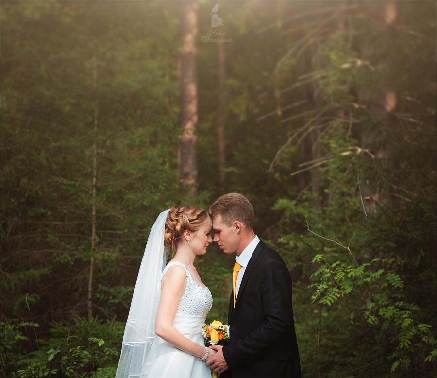 Солнечная свадьба 61