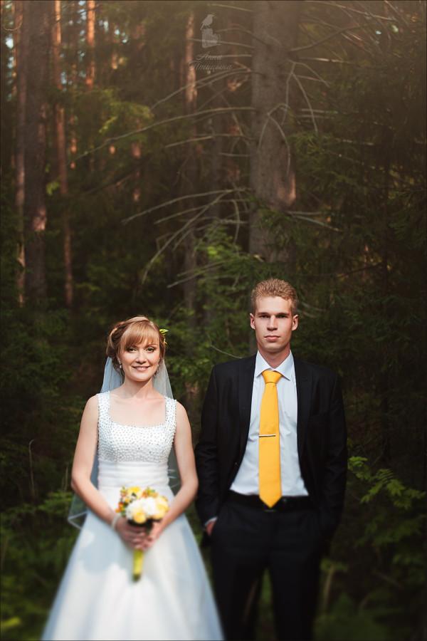 Солнечная свадьба 67