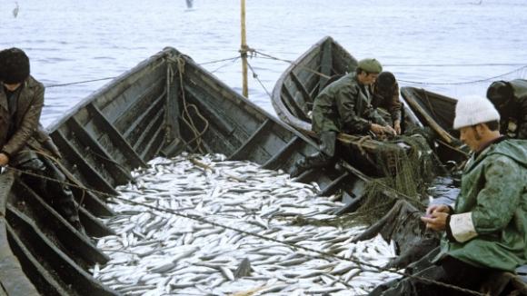 рыболовная инспекция иркутск