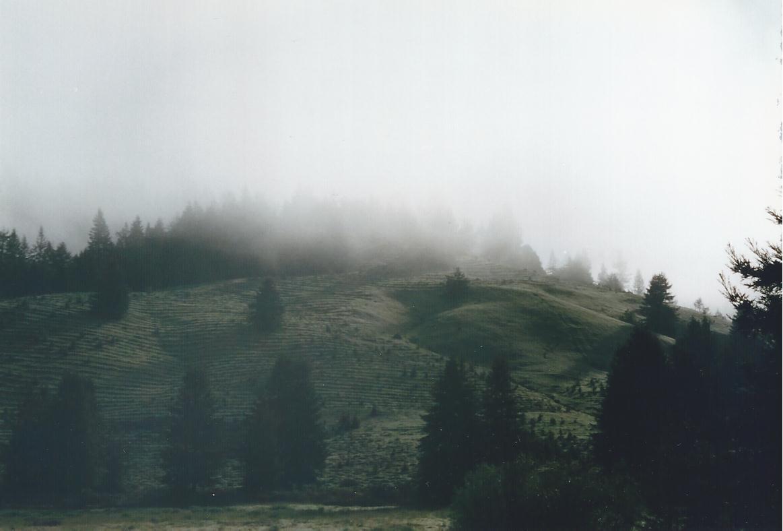 Northern California morning fog-2