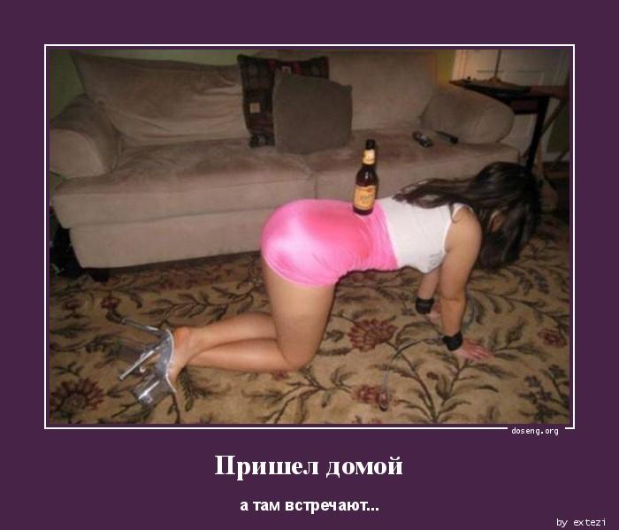 1354745674_Prishel-domoy_doseng_org