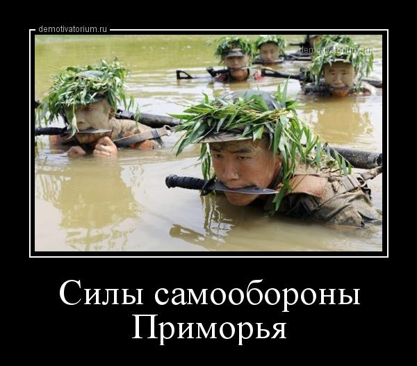 Силы самообороны Приморья (демотиватор)
