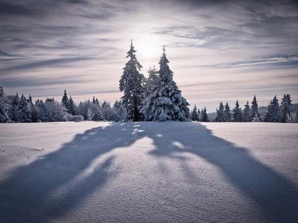 shadow45
