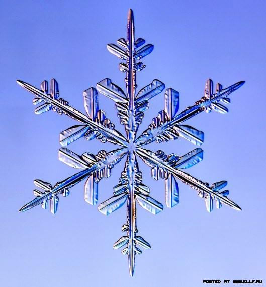снеж1