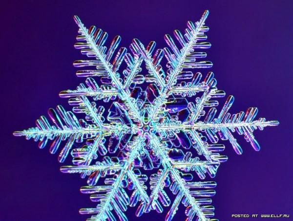 снеж5