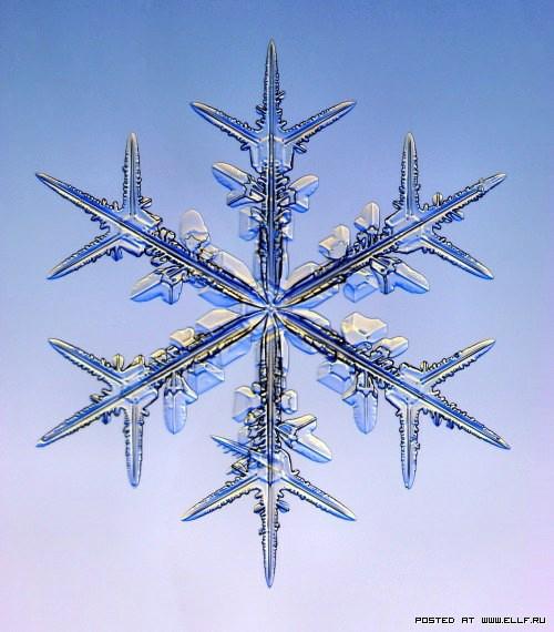 снеж6