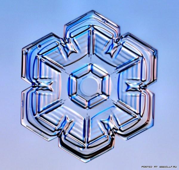 снеж22