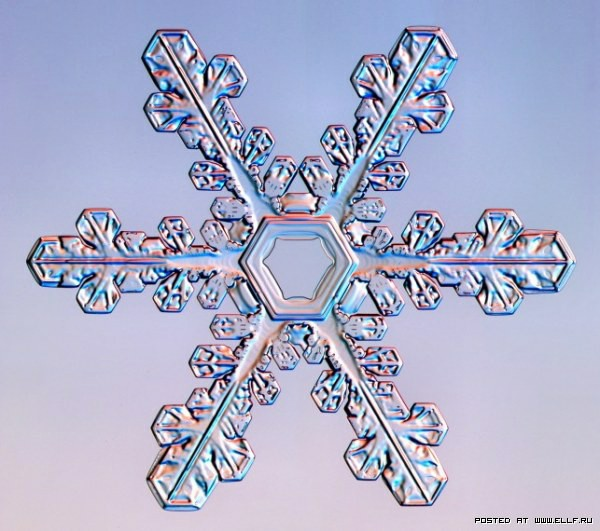 снеж23