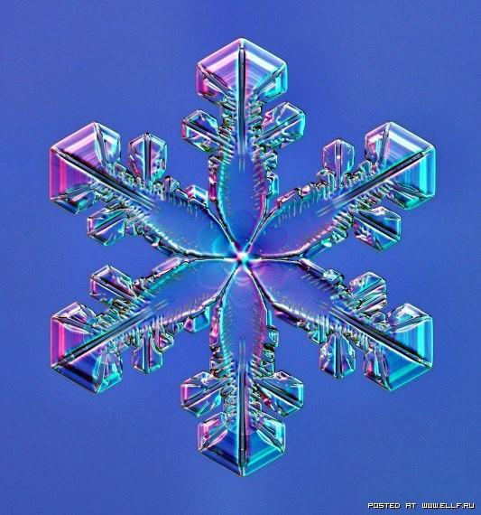 снеж24