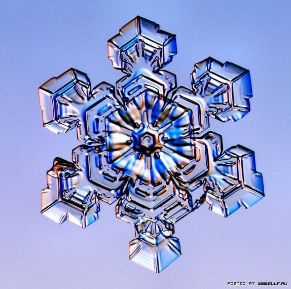снеж31