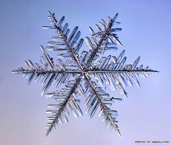 снеж32