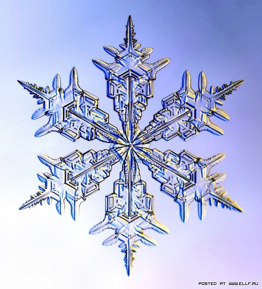 снеж34