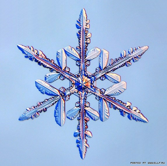 снеж35