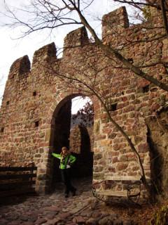 Вход в  замок Ронколо