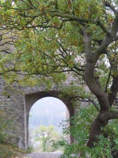Ворота во внешней стене замка