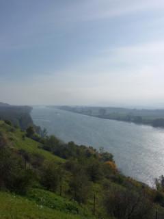 И снова Дунай - не могла удержаться:)