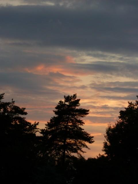 Дзукийский закат