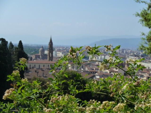 Еще вид на Флоренцию