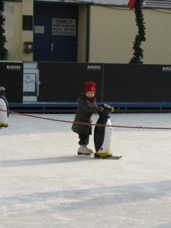 Пингвинятник