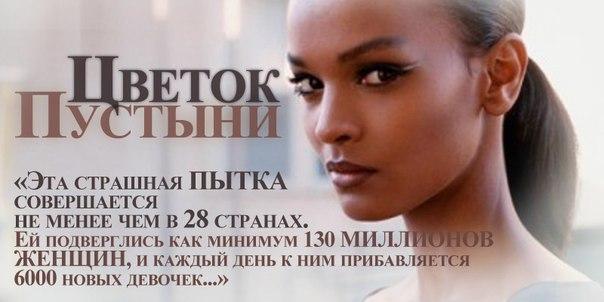 Цветок пустыни смотреть на русском фото 66-792