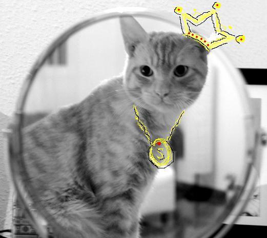 Сте королевич