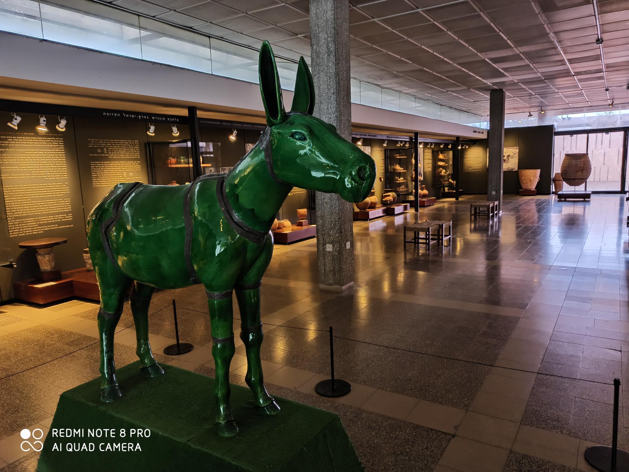 Музей. Зеленый ослик.