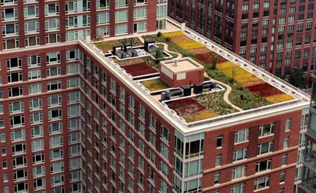 green_roof_02