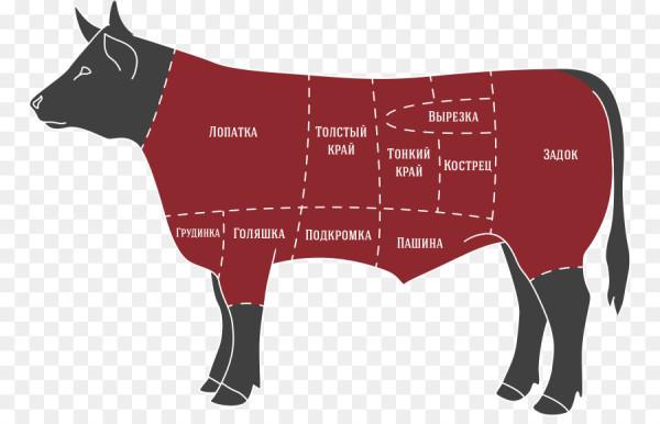 Бык на мясо
