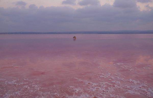 Розовые озера торревьеха