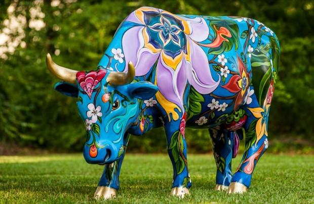 cow_fest_08