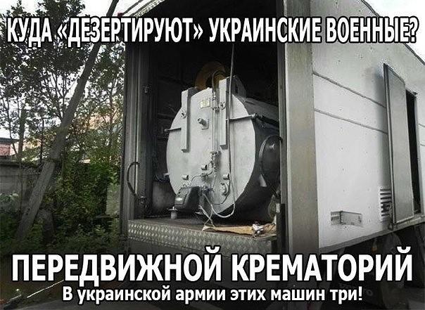 image1E9YE562.jpg