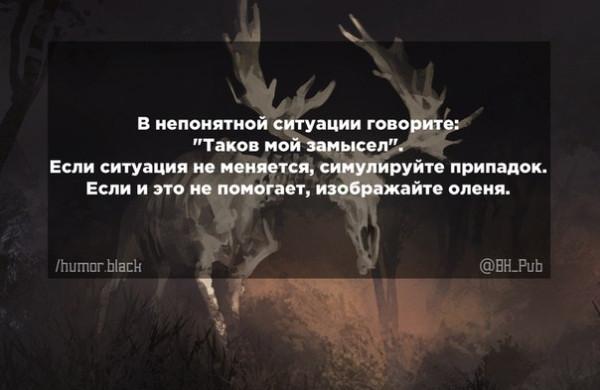 wABrDOKzI6Y