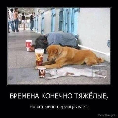 -vVy87_pfUU