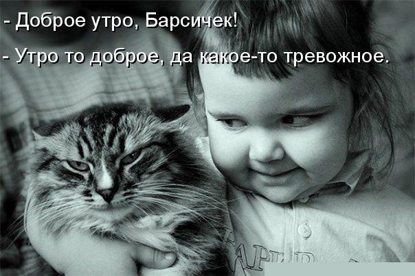 картинки-животные-юмор-песочница-469726 (1)
